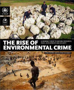 relatorio de crimes ambientais pnuma interpol