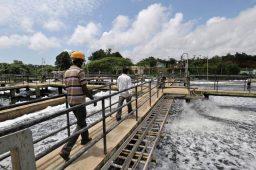 ONU: 75% dos empregos dependerão da água nas próximas décadas