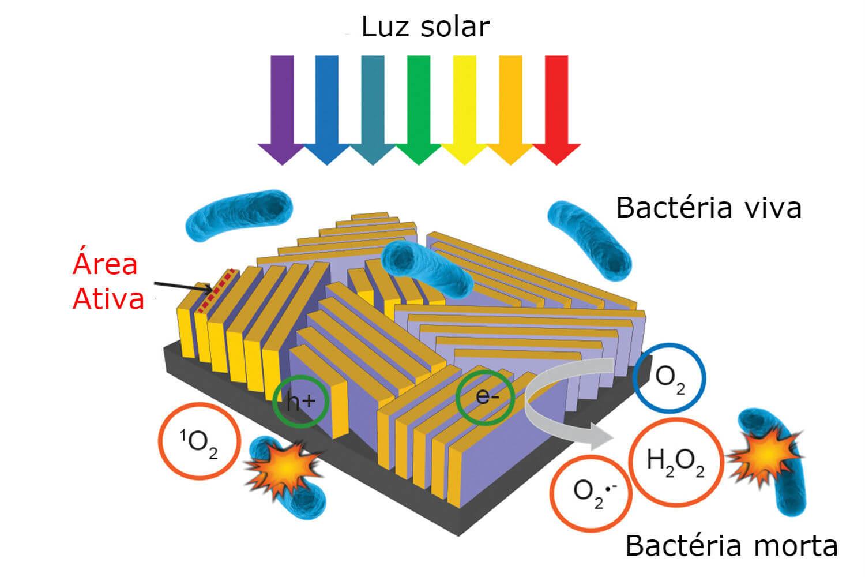 Em contato com a luz solar, o dispositivo ativa uma reação química e elimina bactérias (Foto: Universidade de Stanford/Divulgação)