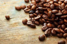 Produção do café pode cair pela metade até 2050, diz pesquisa