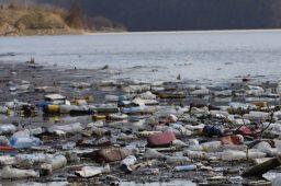 recuperar rio poluido