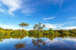 Proteger rios custa US$ 2 por pessoa, afirma organização ambiental