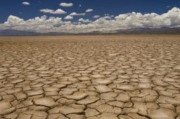 Seca no Nordeste deve se agravar entre fevereiro e abril
