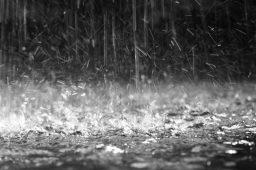 Chuva na agua