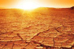 Alertas de seca no Brasil quadruplicam em 13 anos, diz ANA