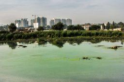 """""""Vale do Silício da Índia"""" pode ficar sem água a partir de 2020"""