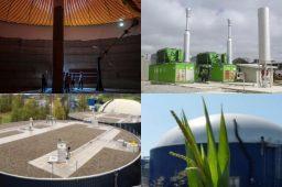 Lodo de estação de tratamento vai gerar 5,8 MW de energia no Paraná