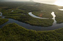 Região oeste da Amazônia era alagada pelo mar do Caribe, revela estudo