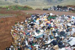 Descarte inadequado de lixo pode custar R$ 4,65 bilhões ao País até 2021
