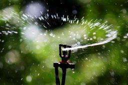 """Irrigação variada """"prescreve"""" volume de água e aumenta eficiência no campo"""