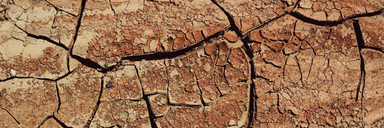 Seca prolongada compromete áreas agrícolas e indica risco de desertificação